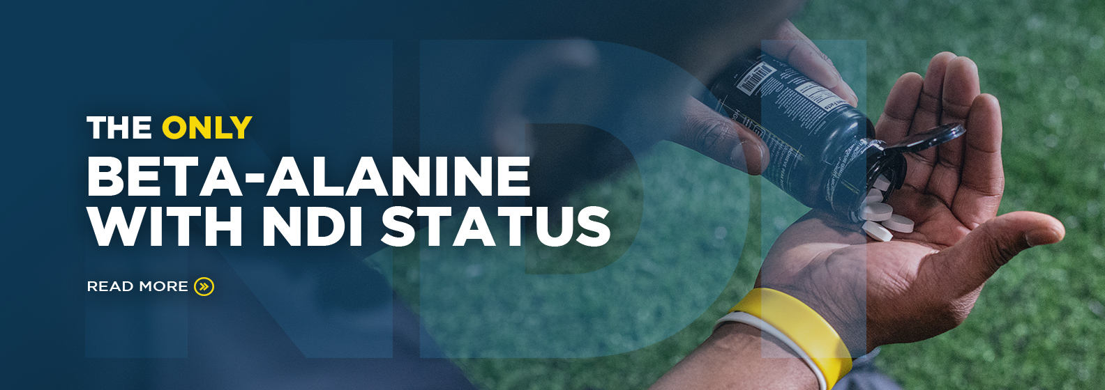 only beta alanine with ndi status