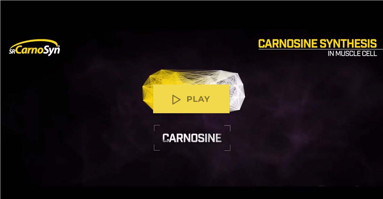 science of carnosine